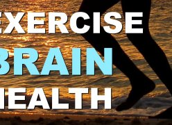 Embedded thumbnail for 3 Ways Exercise Increases Brain Health